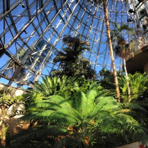 BIO DOME in the San Antonio Botanical Gardens